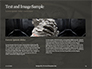 Chinese Dragon Statue  Presentation slide 14