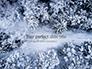 Beautiful Snowy Winter Forest Presentation slide 1