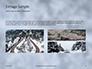 Beautiful Snowy Winter Forest Presentation slide 12