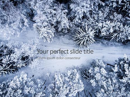 Beautiful Snowy Winter Forest Presentation Presentation Template, Master Slide
