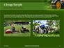 Trimming Fresh Grass Presentation slide 11