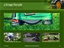 Trimming Fresh Grass Presentation slide 13