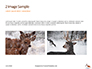Deer in the Winter Field Presentation slide 11