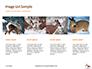 Deer in the Winter Field Presentation slide 16