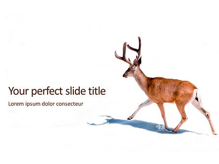 Deer in the Winter Field Presentation Presentation Template, Master Slide