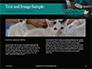 Vet Surgeon Presentation slide 14