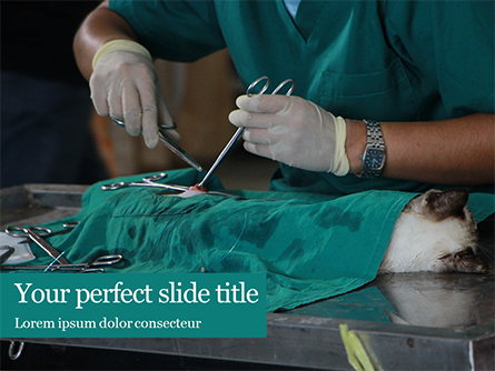 Vet Surgeon Presentation Presentation Template, Master Slide