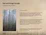 Charred Forest Presentation slide 15