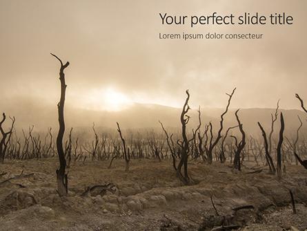 Charred Forest Presentation Presentation Template, Master Slide