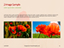 Red Poppy in the Field Presentation slide 11