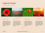 Red Poppy in the Field Presentation slide 16