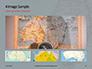 Australia Map Presentation slide 13