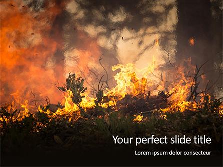 Bushfire Presentation Presentation Template, Master Slide