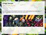 Frame of Green Organic Vegetables on Wooden Surface Presentation slide 10