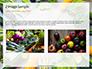Frame of Green Organic Vegetables on Wooden Surface Presentation slide 11