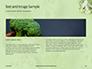 Broccoli on Green Background Presentation slide 14