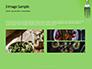 Silver Fork on Green Background Presentation slide 12