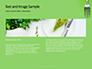 Silver Fork on Green Background Presentation slide 14