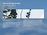 Amazing Winter Landscape Presentation slide 14