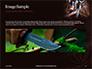 Hunting Knife and Kerosene Lamp Presentation slide 10