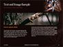 Hunting Knife and Kerosene Lamp Presentation slide 14