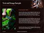 Hunting Knife and Kerosene Lamp Presentation slide 15