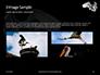 Great Egret Presentation slide 12