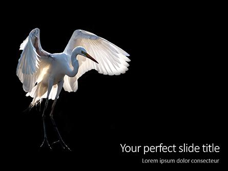 Great Egret Presentation Presentation Template, Master Slide