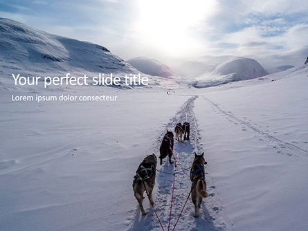Dog Sledding Presentation Presentation Template, Master Slide
