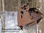 Rusty Military Helmet Presentation slide 1