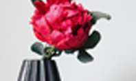 Beautiful Red Flower in Vase Presentation Presentation Template