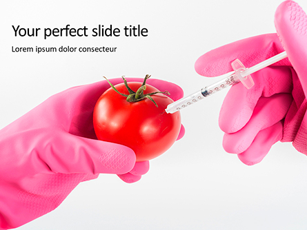 GMO Scientist Injecting Liquid from Syringe into Tomato Presentation Presentation Template, Master Slide