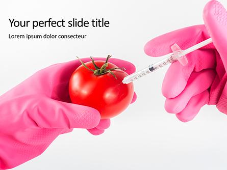 GMO Scientist Injecting Liquid from Syringe into Tomato Presentation Presentation Template, Master Slide