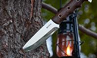Knife in a Tree Trunk Presentation Presentation Template