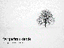 Alone Tree on a Winter Field Presentation slide 1