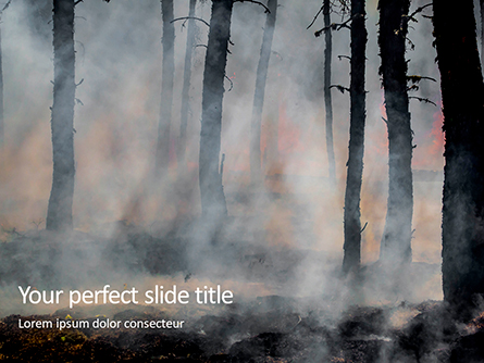 Tree Trunks in a Smoke Presentation Presentation Template, Master Slide